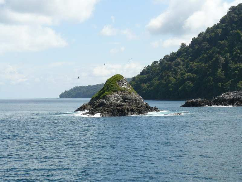 Isla Gorgona Colombia