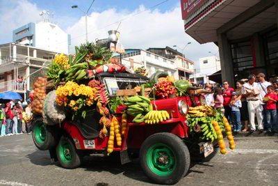 Desfile Yipao