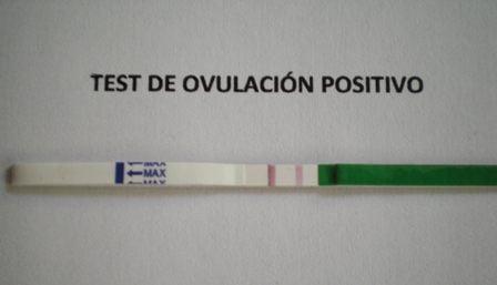 Todo acerca del test de ovulación