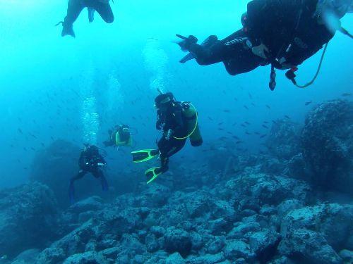 Buceo Isla de Malpelo