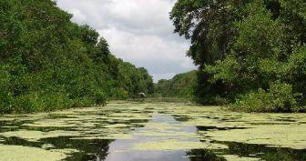 Parque Natural Isla de Salamanca