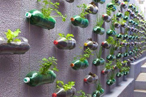 La Belleza del Reciclaje