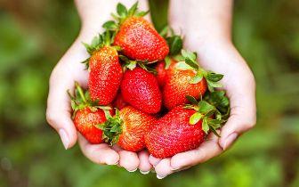 las fresas para limpiar la piel seca