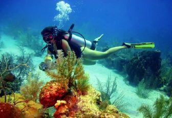 buceo en Cartagena de Indias