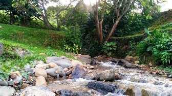 Naturaleza Calima Chalet