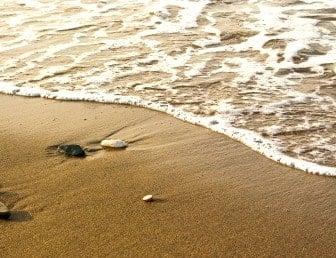 Playa Casa Grande