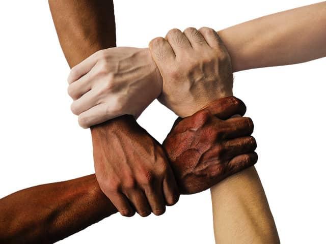 buscar apoyo y estudiar en grupo