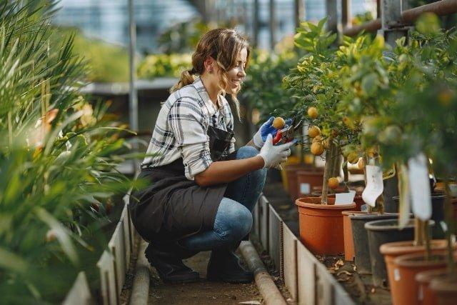 Jardineros especializados